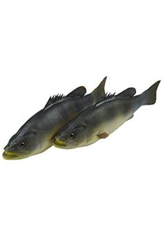 Artificial Weever Lifelike and Realtouch PU Fish for Fish Tank or the Aquarium Restaurant Hotel Display -- For more information, visit image link.
