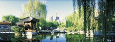 Darling Harbour: Chinese garden & saturday night fireworks