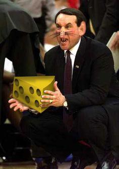 I swear this was NOT photoshopped! Basketball Funny, Basketball Stuff, Unc Chapel Hill, Unc Tarheels, Go Big Blue, Girls Heels, University Of North Carolina, Win Or Lose, Tar Heels