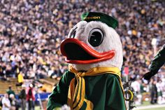 The Most Memorable College Mascots via SPORTS in a blog!
