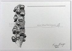 WhereFishSing.com Fiona Morgan, pen drawing 'Meditative Study' #WhereFishSing BANKSIA Matted Nature illustration ORIGINAL Botanical Drawing, Australian art, Black & White, pen & ink, zen, mindfulness