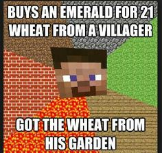 """""""Minecraft logic"""" who doesn't do this?"""