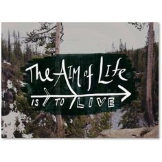 Trademark Fine Art The Aim of Life Canvas Art by Leah Flores, Size: 18 x 24, Multicolor