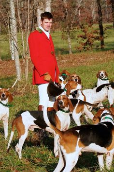 geekinminiature: Huntsman Jordan Hicks and the Tryon Hounds Finest pack of American Foxhounds in the country! I Love Dogs, Cute Dogs, Southern Women, Southern Comfort, American Foxhound, English Style, English Manor, English Gentleman, Tally Ho