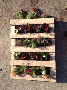 #DIY, #PalletPlanter, #RecycledPallet, #VerticalGarden