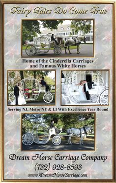 Fairy Tales Really Do Come True. Reserve your Cinderella Carriage for your upcoming wedding or special event. www.dreamhorsecarriage.com