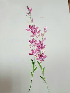 천에 꽃그림을 배우면서,생전 듣도 보도 못한 꽃들을 참 많이 만납니다.오늘은, 가우라와 미역취, 란 꽃을 ...
