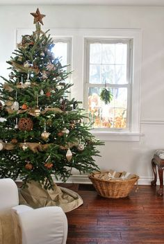 The Grower's Daughter: Trimming Our Christmas Tree