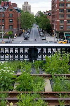 High line NYC. A decrepit rail line in NYC was saved and converted into a beautiful walk path over the city streets and blocks.