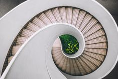 white and brown concrete spiral stairs photo – Free Spiral Image on Unsplash Staircase Pictures, Interior Design Courses, Staircase Makeover, Elements And Principles, Design Theory, Shops, Staircase Design, Concrete Staircase, Cool Diy