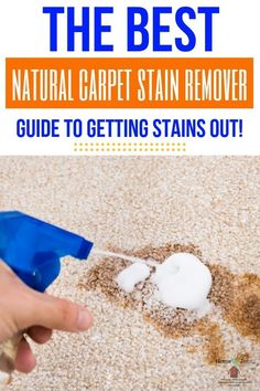 Natural Carpet Stain Remover that will get those stubborn stains out of your carpet in a hurry! A natural carpet cleaner that works. Deep Cleaning Tips, House Cleaning Tips, Spring Cleaning, Cleaning Hacks, Cleaning Routines, Cleaning Products, Natural Carpet Cleaners, Cleaning Painted Walls, Stain Remover Carpet