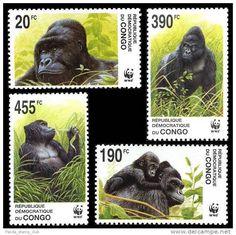 Gorillas: Magnificent beasts.