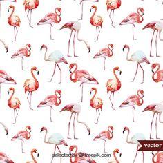 Flamingos da aguarela Vetor grátis