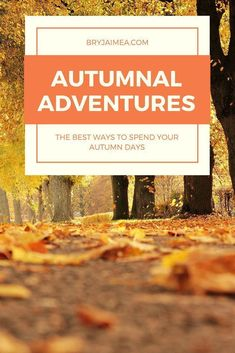 Autumnal Adventures - things to do and see in fall and autumn. Ideas for autumn and fall outings and adventures - Bry Jaimea  #autumn #fall #thingstodo #winter #travel #adventure #wanderlust