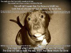 Pit Bull Prayer by bree_garcia