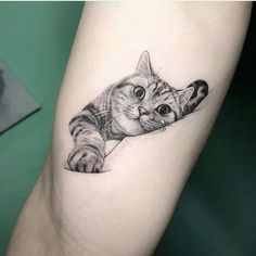 Cat tatoo tatoo ideas cat tattoo designs, cat tattoo a tatto Cat Tattoo Designs, Unique Tattoo Designs, Unique Tattoos, Beautiful Tattoos, Simple Mens Tattoos, Cute Animal Tattoos, Cute Cat Tattoo, Kitten Tattoo, Tattoo Animal