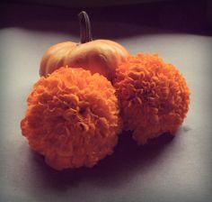 November... Happy Halloween