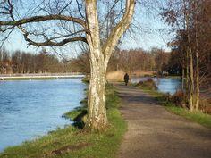 winsen luhe | Panoramio - Photo of Hochwasser in Winsen (Luhe)