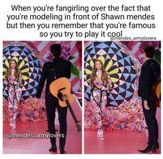 Shawn Mendes Memes, Shawn Mendes Imagines, Chon Mendes, Mendes Army, Funny Memes, Hilarious, Shawn Mendez, Charlie Puth, Magcon Boys