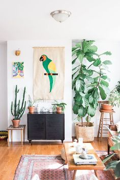 Plants and parrot wall hanging give a topical vibe to this living space. Love bird decor and greenery.
