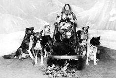 sled racing history - Google Search
