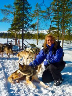 A Husky Safari is so much fun, what an incredible experience. Lapland has so many original activities, love it. Best Family Vacations, Family Travel, A Husky, Travel And Leisure, Travel Tips, Travel Usa, Travel Europe, Travel Reviews, Wanderlust Travel