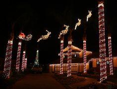 Brea Christmas Lights Archives - Popsicle Blog