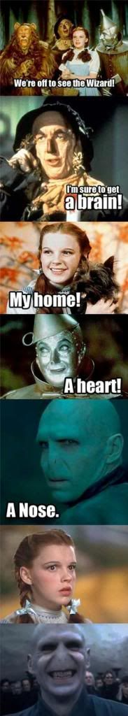 Wizard of Oz Voldemort Harry potter Ridiculous Harry Potter, Harry Potter Jokes, Harry Potter Fandom, Kubo And The Two Strings, Draco Malfoy, The Best, I Laughed, Haha, Funny Pictures