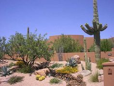 Desert Landscape Design Charming Design Landscape Creations Of Arizona Offers Desert And Tropical Options That Backyard & Garden Ideas Backyard Arizona, Desert Landscaping Backyard, Small Front Yard Landscaping, Succulent Landscaping, Landscaping Trees, Landscaping With Rocks, Backyard Ideas, Arizona Landscaping, Desert Gardening