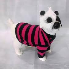 Resultado de imagem para molde gratis roupa para cachorro pequeno
