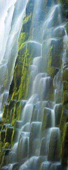 Glacial meltwater flows over the moss covered basaltic columns of Oregon's Proxy Falls. (Location: Lane County, Oregon) by Ryan Hel ~ Old Moss Woman's Secret Garden ~ facebook