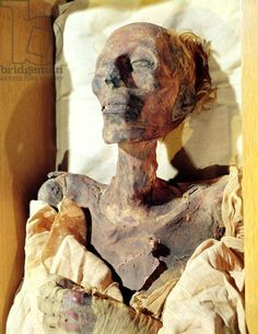 Mummified body of Ramesses II (1304-1237 BC) found in a tomb at Deir al-Bahri