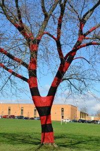 Fiber Artist Carol Hummel shares her award-winning tree crochet skills with Chardon, Ohio