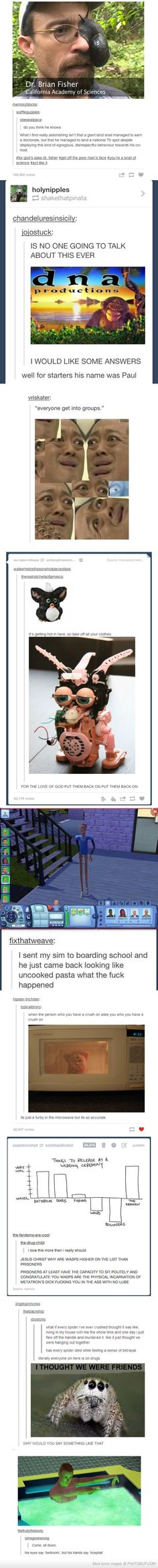 My Favorite Tumblr Posts