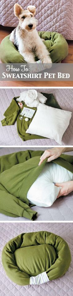 How to make your own dog bed...can pick a sweatshirt up at good will and probably a pillow or blanket to stuff  it with as well >>> Fun idea!