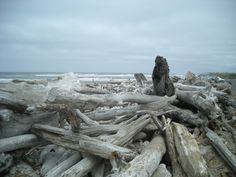 Bandon State Beach, Oregon