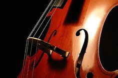 violoes celo - Pesquisa Google