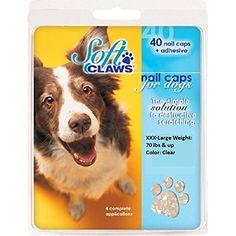Amazon.com : Jumbo Clear Soft Claws Nail Caps for Dogs Canine 70+ lbs : Pet Supplies - Need these for Duke!