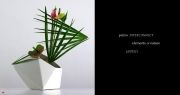 The Ikebana Sharp Gallery « Unique Japan (uniquejapan.com)