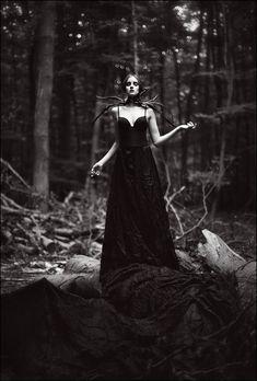Noir by Claudia Wycisk