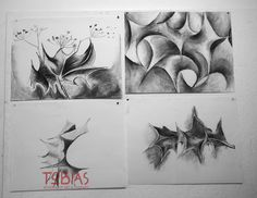 Drawing from Nature at Tobias