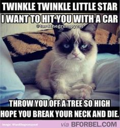 """Twinkle Twinkle Little Star"" - Grumpy Cat Version"