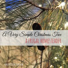 A Very Simple Christmas Tree – A Frugal Homesteader - Living on a farm, and being very frugal we have had to learn to live on what the farm provides for us and Christmas time is no different! The price tag of a fresh cut tree from our local tree farm was $65 this year...way out of our budget.