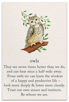 A very fresh approach to cards, these 100 illustrated designs feature popular symbols and their significance. Owl Quotes, Words Quotes, Life Quotes, Owl Learning, Illustration Photo, Spiritual Symbols, Yoga Symbols, Mayan Symbols, Viking Symbols