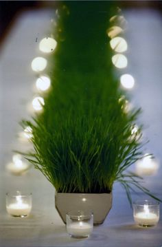 Centerpiece of wheat grass accented by candles.