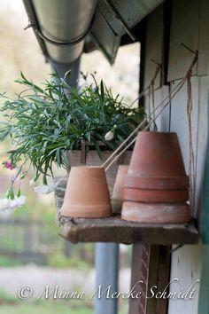 Minuthyllan till planteringsbordet | blomsterverkstad