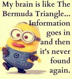 Funny Quotes Minions And Minions Quotes Images. Read amazing these Funny Quotes Minions And Minions Quotes Images . Funny Minion Memes, Minions Quotes, Funny Jokes, Minions Pics, Minion Humor, Funny Sayings, Minion Sayings, Minion Stuff, Minions Images