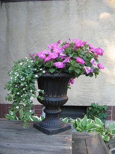 backyard urn by FiveFathoms, via Flickr