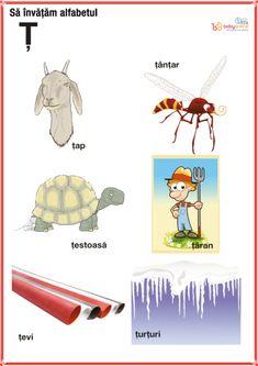fise imagini reprezentative ale literelor din alfabet | Cu Alex la gradinita Learning Tools, Kids Learning, Oracle Cards, Kids Education, Homeschool, Comics, Logos, Montessori, Fictional Characters