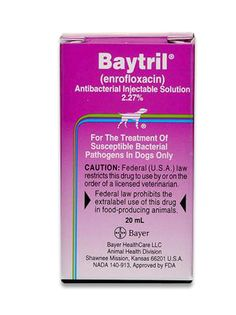 Baytril Injection - Pet Prescription Medication